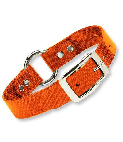Ll Bean Dog Collar