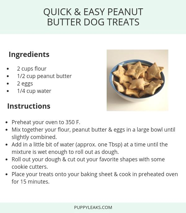 Looking For A Simple Dog Treat Recipe Check Out These Quick