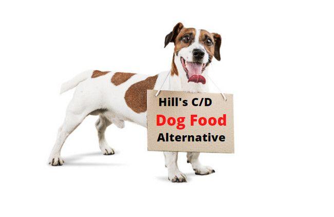 Pin On Dog Food