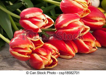 Bunch of red-yellow tulips; closeup shot.