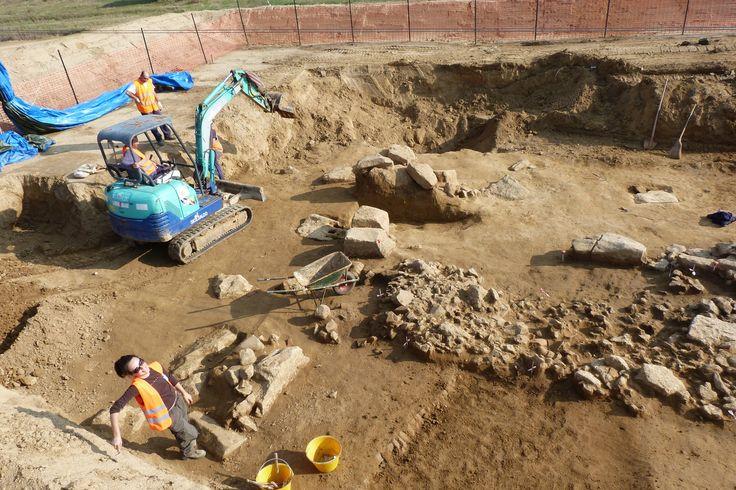 Il sorriso dell'archeologa I. Giuncaiola, Pontedera - null