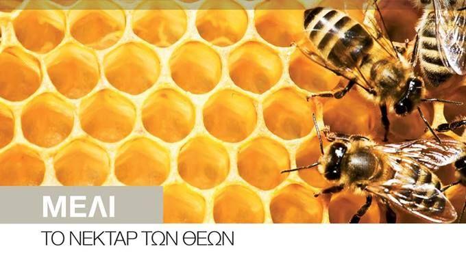 Μέλι…Το νέκταρ των θεών!  Οι θεοί του Ολύμπου τρέφονταν αποκλειστικά με μέλι (αμβροσία) και νέκταρ (υδρόμελο: ηδύποτο που παράγεται από την αλκοολική ζύμωση του μελιού).  για να καταχωρηθείτε στο περιοδικό και να συνεργαστούμε για την αποτελεσματικότερη προβολή σας.  Επικοινωνήστε στο 2310-960710 ή στείλτε email στο :  info@xenagosthessalonikis.gr  #Ξεναγός #Θεσσαλονίκη #Περιοδικό