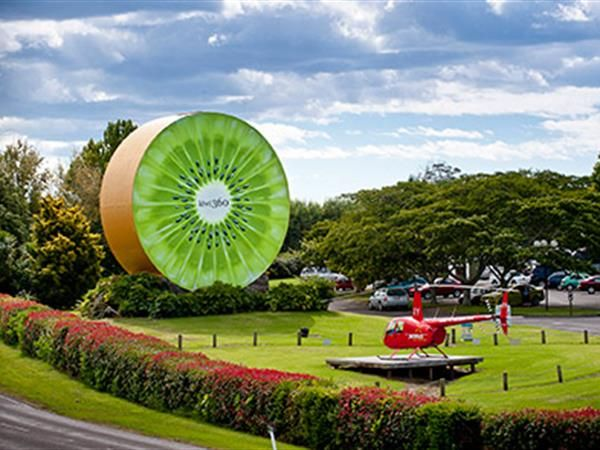 Auckland to Waitomo, Taupo, Rotorua and Bay of Plenty Private 5 Day. See quaint river towns, volcanic mountains and beautiful scenery when you experience our Auckland to Waitomo, Taupo, Rotorua and Bay of Plenty Private 5 Day Tour. TIME Unlimited Tours.