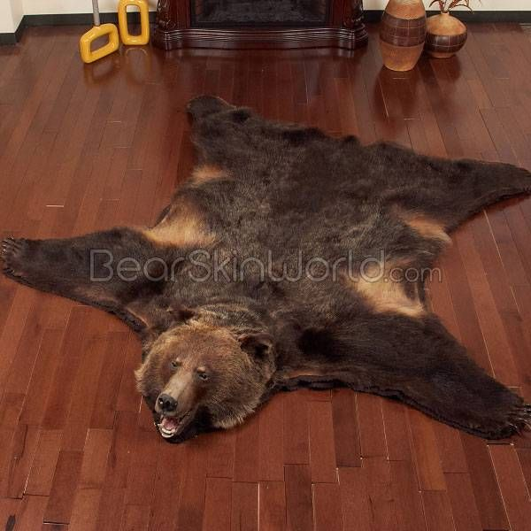 bear skin rug 17 best images about get laid on furniture 31186