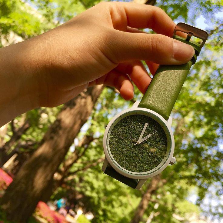 腕にグリーン生えてる感じ また時計買っちゃった #iroza #forest #芝生 by 38rarara