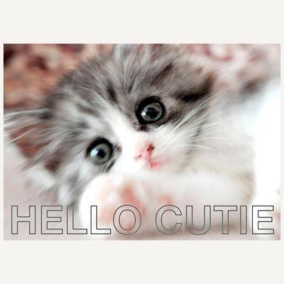 Hello Cutie #postcards