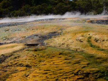 Steaming geothermal terraces at Orakei Korako look like something from another planet!