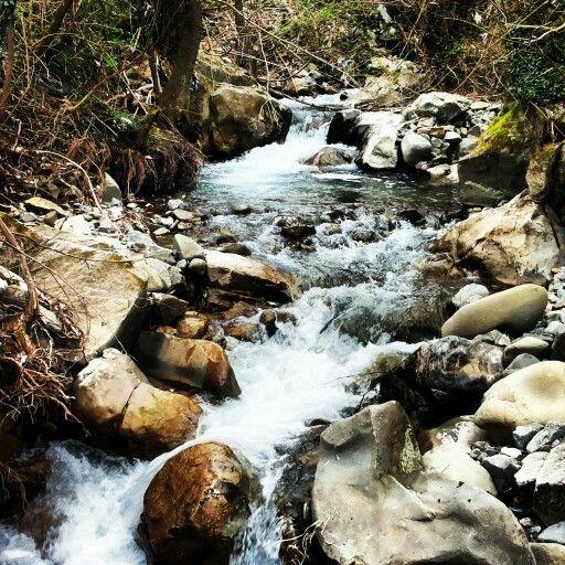 Un fiume di idee