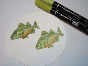 By Michelle Zindorf. Coloring fish. Load stamp with VersaMark then Always Artichoke; stamp on white cardstock; heat emboss with clear powder. Color fish stomach with So Saffrom marker. Add More Mustard at bottom; blend with So Saffron marker. Add Pool Party marker above the So Saffron. Color rest of fish with Certainly Celery. Add Lucky Limeade just above the Pool Party. Let dry. Color whole fish with VersaMarker. Heat emboss with clear powder.