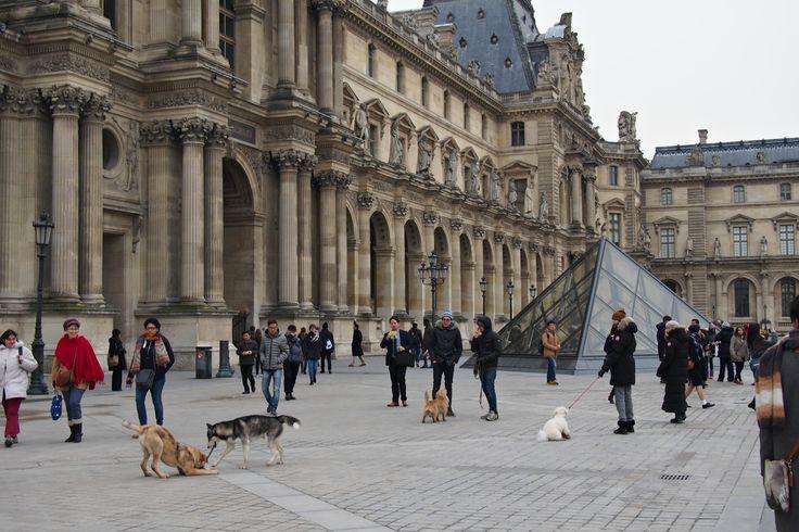 Hannas Home / Paris in January / Musée du Louvre