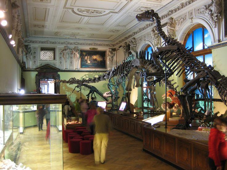 naturhistorisches museum wien - Google Search