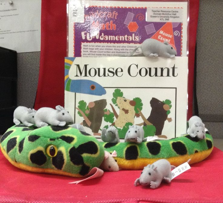 """513.2 W35 """"Mouse Count, Math Bag""""  Math bags contain materials designed to help children grasp the basics of math centered concepts. This kit teaches about counting. As ten mice outsmart a hungry snake. Includes plush mice and snake along with book.  Available for borrowing."""