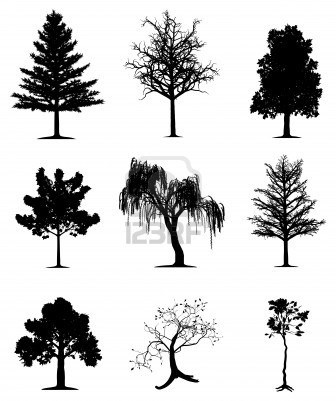 Illustratie Van De Boom En Plant Silhouetten Royalty Vrije Cliparts, Vectoren, En Stock Illustratie. Image 13930790.