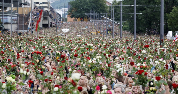 A sea of roses, in honour and loving memory of those who tragically lost their lives in the hands of the mass muderer who raided Oslo and Utøya, July 22 2011.