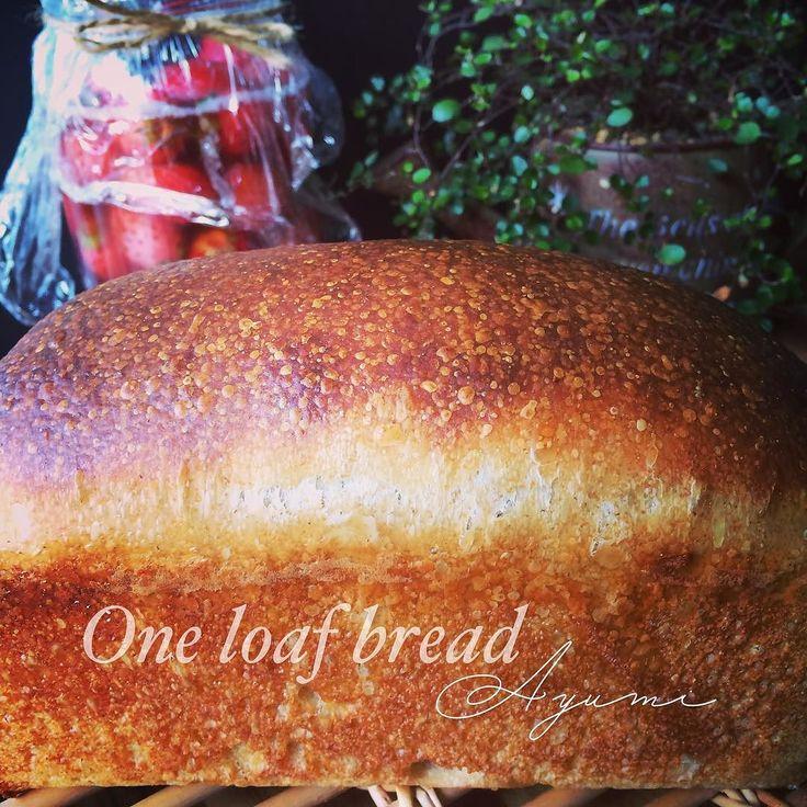 One loaf bread  ワンローフ挑戦 2回目は苺中種酵母使用 低温でゆっくり 発酵させたよ  でもあんまり 元気なかったな いっぱい回数 焼かなね 全然違う匂いに 癒されてます  みなさん良い日に なりますように  #love #photo #food #yummy #foodlovers #foodie #foodoftheday #yum #foodpic #bread #homemadeyeast #oneloafbread #breadlover #homenade #naturalyeast #homebread #strawberryyeast #自家製酵母 #おうちパン #手作り #手作りパン #パン作り #パン好き #暮らし #シンプルライフ #ワンローフ食パン #ワンローフ #食パン #勉強中 by ayufavorite