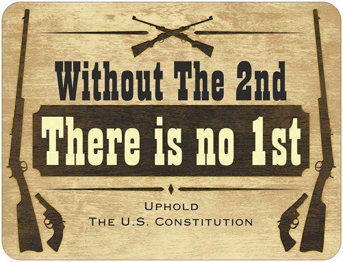 https://i.pinimg.com/736x/19/d8/00/19d8001bb10dfccb157480a7984315ae--gun-rights-gun-control.jpg