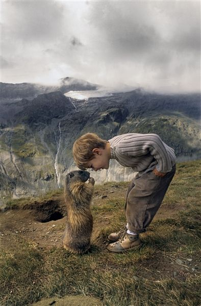 splashduck sharing cute adorable animal pictures. Nose to nose: A marmot greets