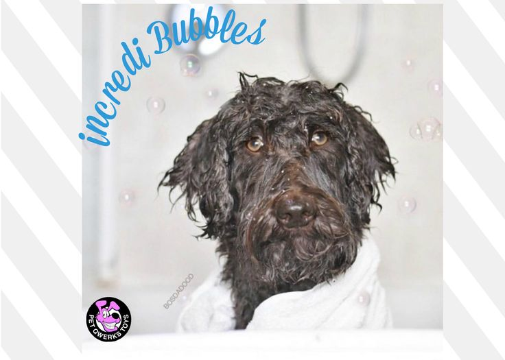 Incredibubbles™ don't pop when they touch the ground! Not your average Bubbles! It's Flavor-Infused Bubbles.
