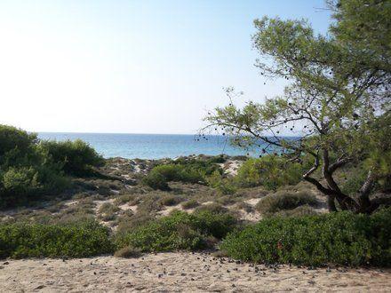 Foto Jiná krajina - fotka turistického cíle Pláž Sani ,