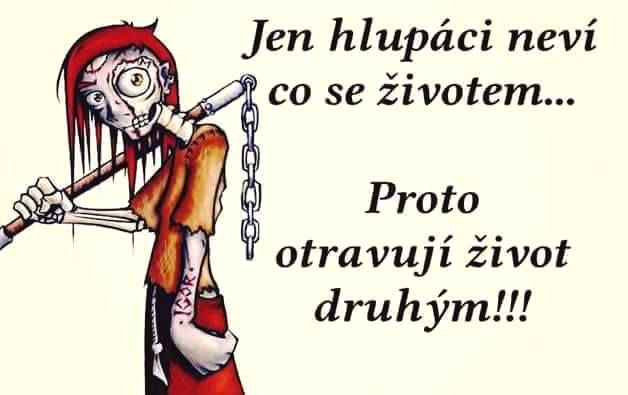 Jen hlupáci neví co se životem.... Proto otravují život druhým!!!
