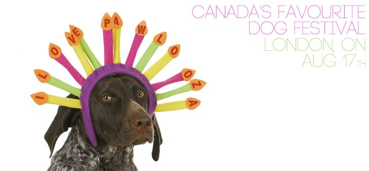 Pawlooza - London's Festival for Dogs! This year the event happens on Saturday, August 15/15