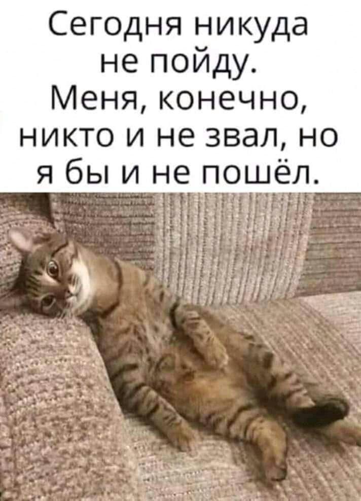 Я не чекаю якогось собі теплого місця в Раді, це не моє, - Клімкін заявив, що не братиме участі в парламентських виборах - Цензор.НЕТ 4876