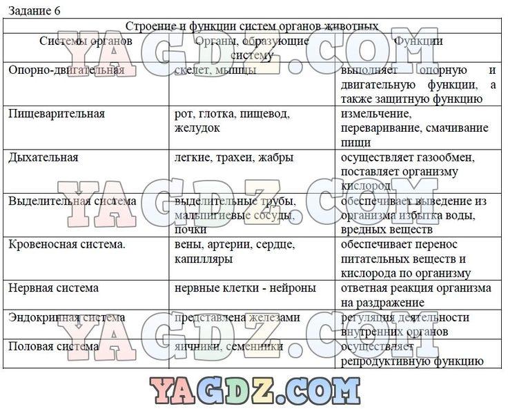 Решебник по русской литературе 6 класс мушинская перевозная каратай уроки французского