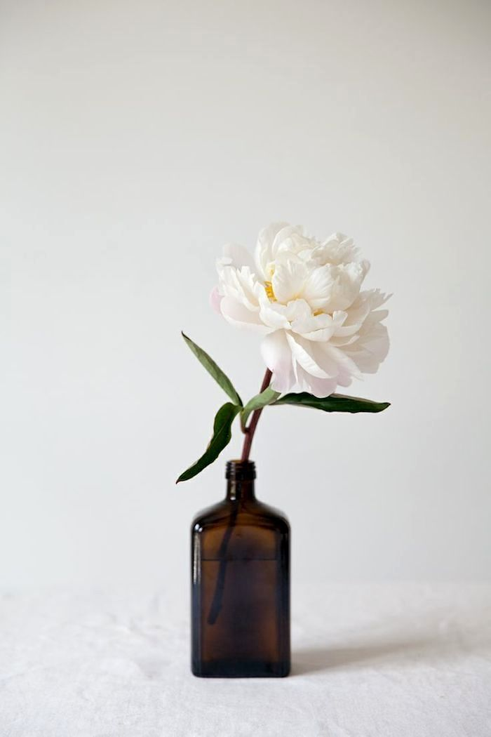 Peony Power: Simple but elegant a single bloom in a bottle #peonies #coloredbottles See more...@intimatewedding