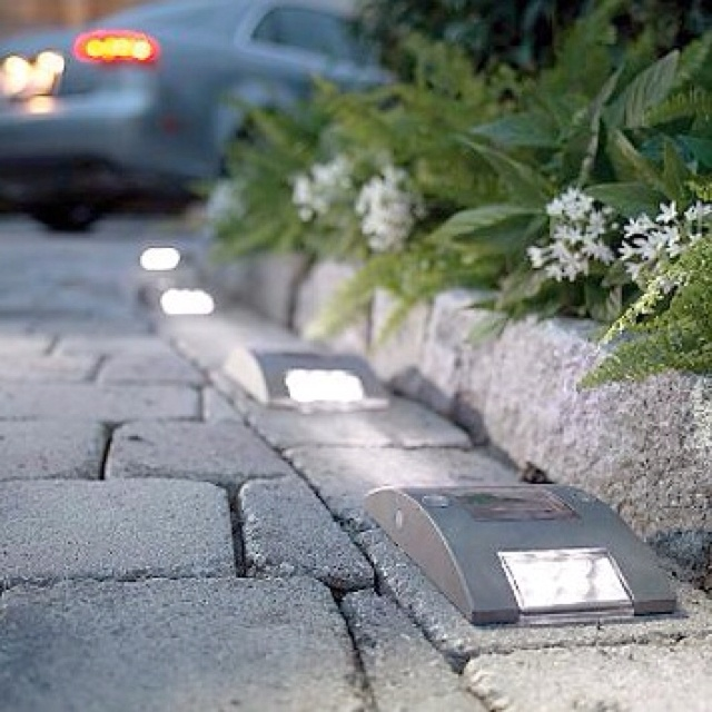 Awesome solar lights for the driveway