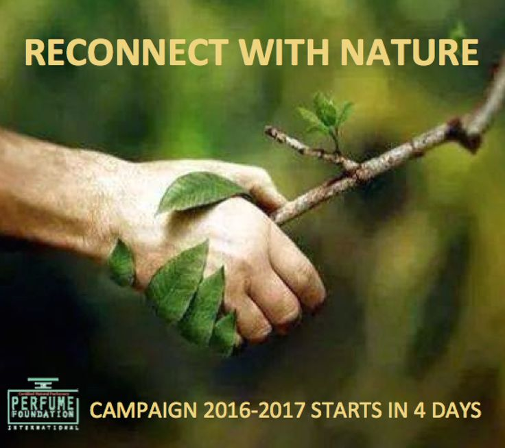 Reconnect with Nature IPF campaign