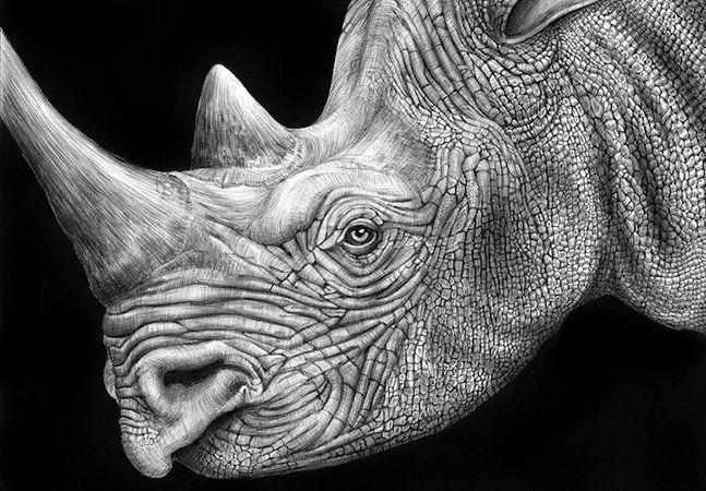 """Tim Jeffs é natural de Nova Jersey, nos Estados Unidos, e sempre teve a arte como passatempo, até que o filho decidiu mostrar ao mundo o talento do pai. Jeffs cria desenhos incrivelmente detalhados de animais, usando sua infinita coleção de canetas, captando com a mesma precisão as expressões de um rinoceronte ou de uma iguana. Cada trabalho pode levar entre 12 a 16 horas do tempo de Jeffs e é fácil perceber porquê – """"fazer arte é a minha paixão. Adoro detalhes. Quanto mais complexo…"""