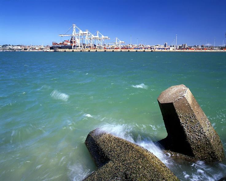 View of Port Elizabeth Harbour