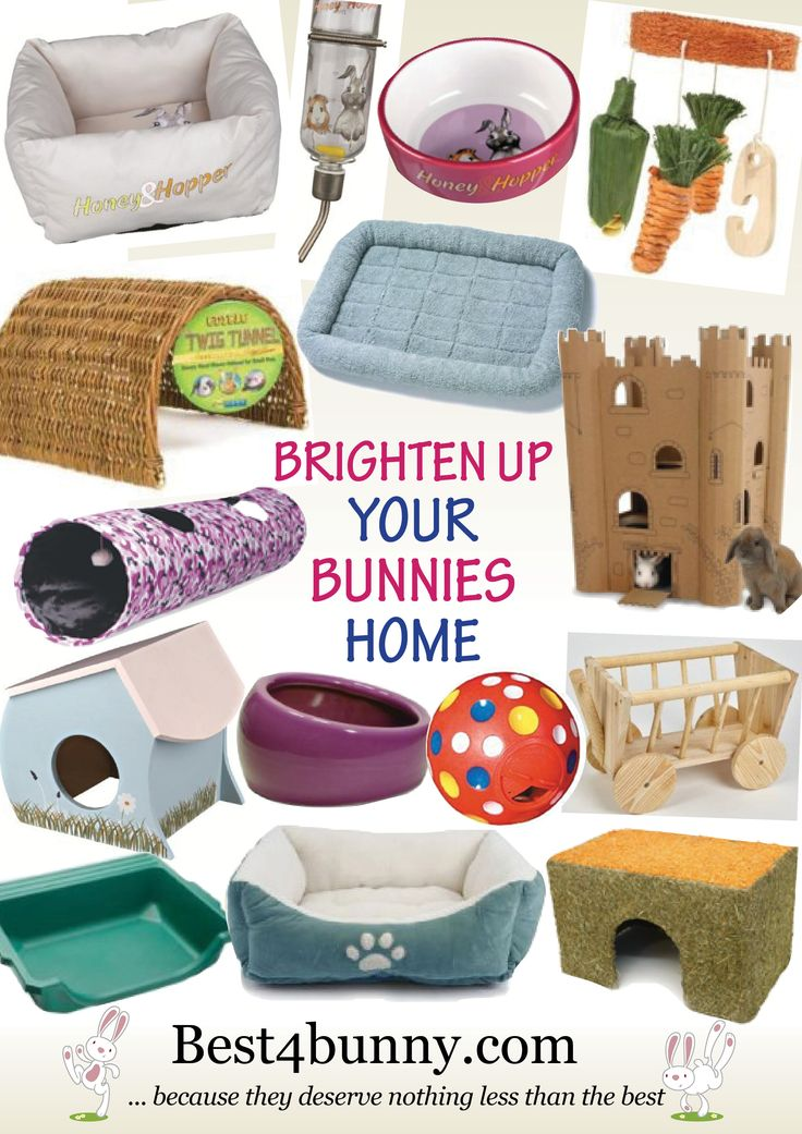 Ways to brighten up your bunnies home! Fab products for your bunny for their home. For UK products visit here browse Fun Things Accessories http://best4bunny.com/bunny-products/ For US products visit here browse Accessories Toys http://astore.amazon.com/best4bunny-20?_encoding=UTF8node=2