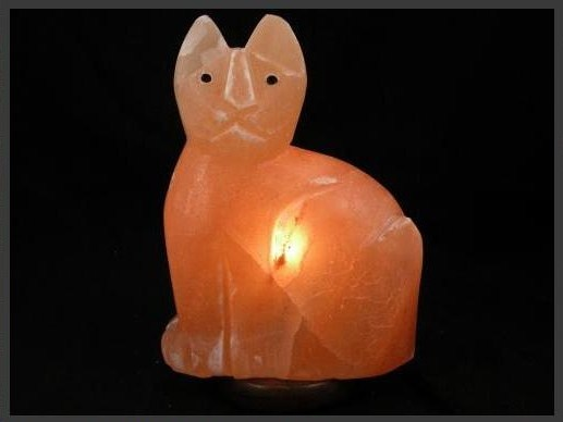 Salt Lamps And Cats : 17 Best images about Salt Lamps on Pinterest Lamps, Himalayan salt and Tea lights