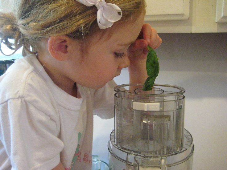 A Little Chef helping make Spinach-Walnut Pesto for #KidsCookMonday! School-bites.com