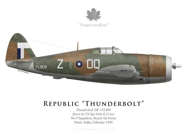 Republic Thunderbolt  I, No 5 Squadron RAF, February 1945. 5 Squadron flew Thunderbolts 1 and ll from September 1944 to February 1946  from various bases in Burma and India.