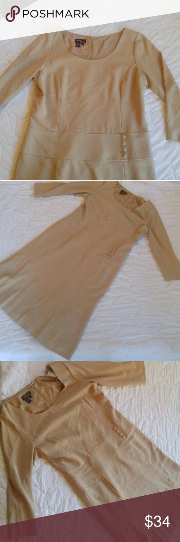 Tan dress Beige/tan 3/4 sleeve dress. Tailored with a dropwaist. Scoopneck and below the knee length. Cynthia Howie Dresses Midi