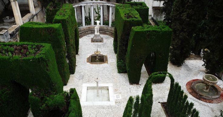 La arquitectura vegetal del Patio de Baco nos sorprende con monumentales perspectivas! #MuseumWeek Foto: Antonio Maldonado