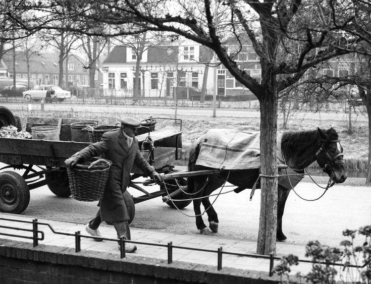 Schillenboer Trouwen met een mand met schillen aan de Zomervaart in Haarlem, 1960.