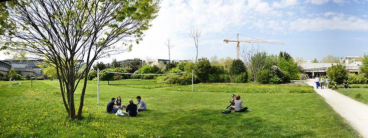 Les 97 meilleures images propos de gilles cl ment for Boulingrin jardin