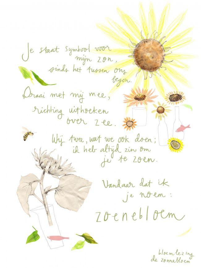 Bloemlezing: de Zonnebloem