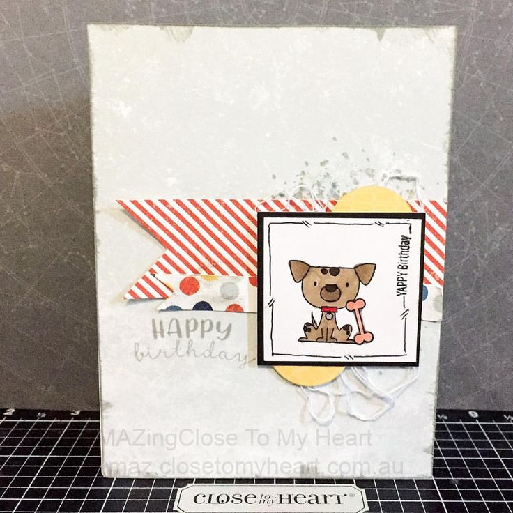 Card Making Ideas Close To My Heart Part - 28: Happy Birthday With Close To My Heart Stargazer Paper U0026 Operational Smile  Punny Pals #CTMH. Animal CardsStargazerHeart ...