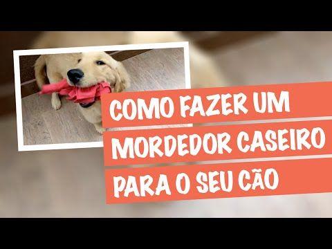 Brinquedos Para Cachorro - Como Fazer um Mordedor Caseiro Para seu Cão - YouTube