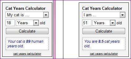 Cat Years Calculator -- Find out your cat's age in human years or your age in cat years. Cats age rapidly early in life, then at a reduced rate the older they get. A 1-year old cat is equivalent to 18 human years old! So multiplying by 7 definitely doesn't apply. (That's not even accurate for dogs!)