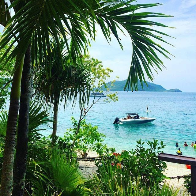 Fitzroy Island Queensland: The View From Foxy's Bar At Fitzroy Island Resort
