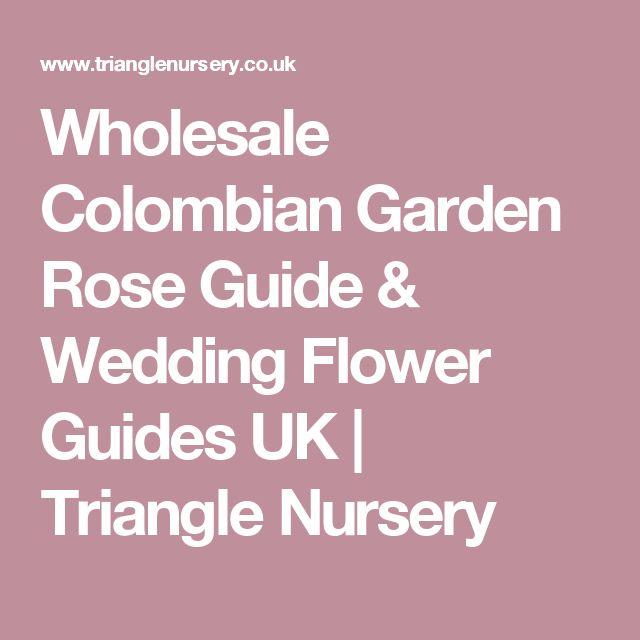 Wholesale Colombian Garden Rose Guide & Wedding Flower Guides UK   Triangle Nursery