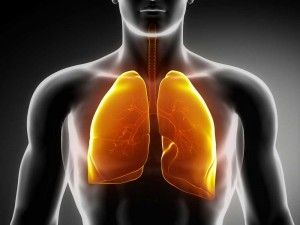 How To Use Honey for Bronchitis Treatment, The bronchitis is a relatively easy disease and healing with honey helps here.