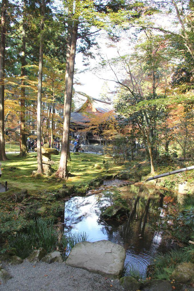人気のパワースポット「京都・大原・三千院」観光で訪れる前に読んでおきたい最強ガイド | 京都府 | Travel.jp[たびねす]