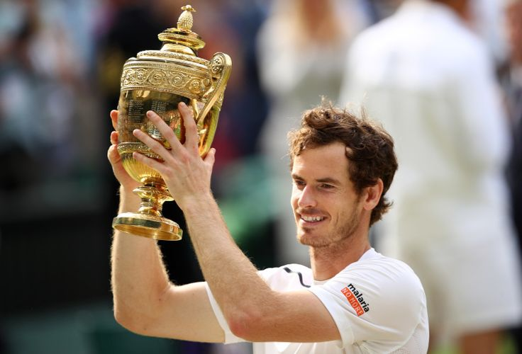 In Pictures: Andy Murray wins Wimbledon with straight sets victory over Milos Raonic   Metro News