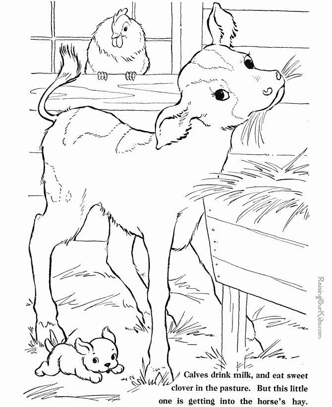 Farm Animals Coloring Sheets Unique Printable Farm Animal Coloring Sheets 028 In 2020 Farm Coloring Pages Cow Coloring Pages Farm Animal Coloring Pages